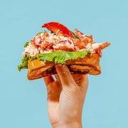 hand holding a sandwich