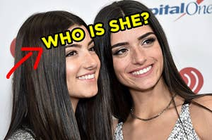 """Charli and Dixie D'Amelio with an arrow pointing to Charli and """"who is she?"""" typed across her forehead"""