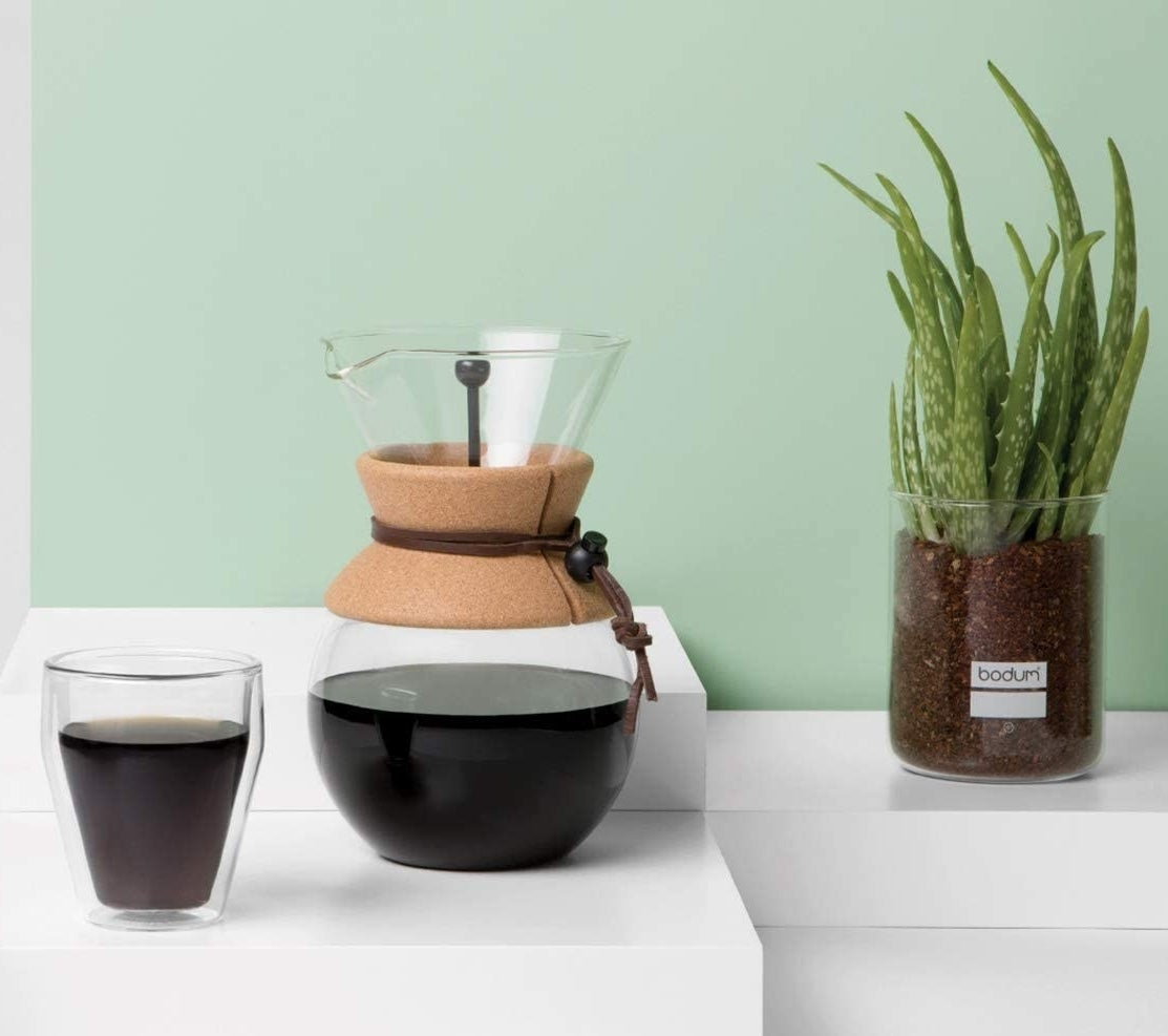The pour-over maker next to a glass and a snake plant