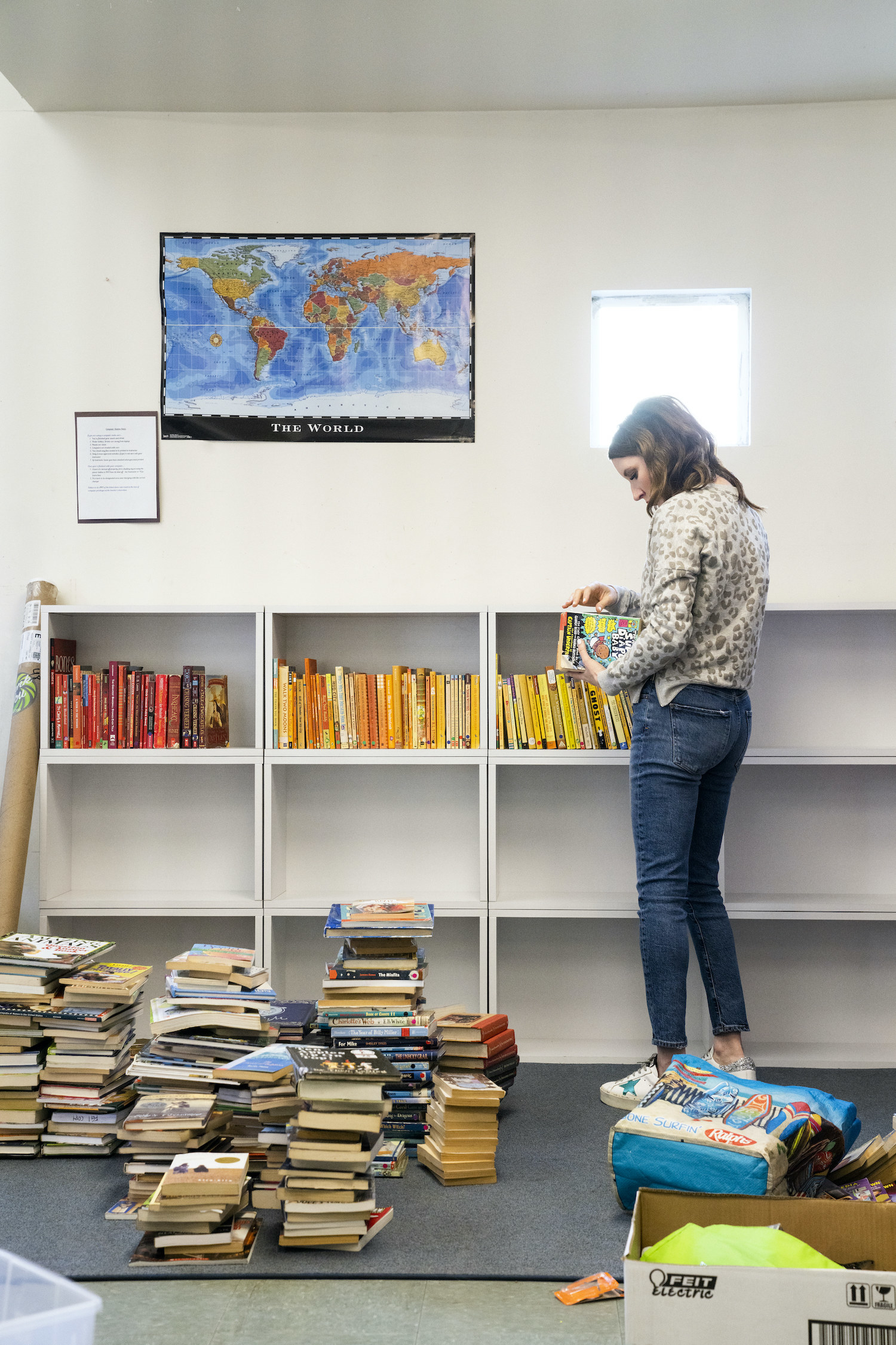 An organizer arranging books by color