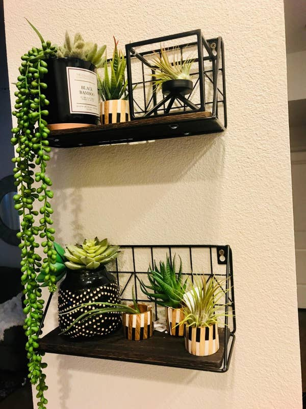 Reviewer pic of two wire shelves with wood bases hanging on the wall with assorted plants on them