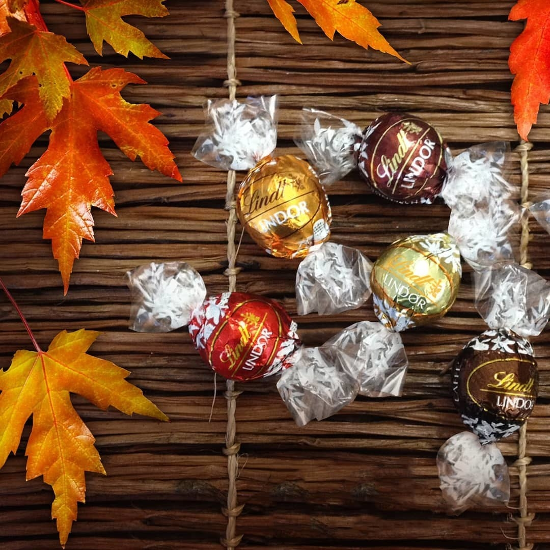 Assorted chocolates on a table with fall leaves