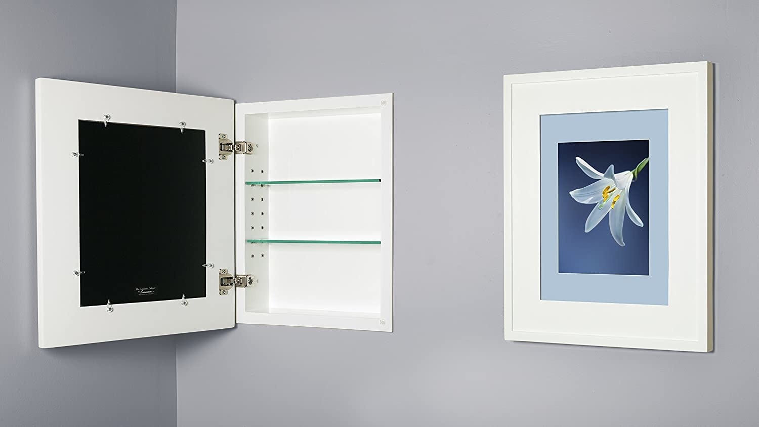 Picture frame that opens up into medicine cabinet