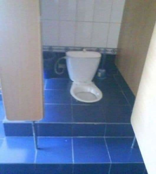 a western style toilet is weirdly constructed like a squat style asian toilet