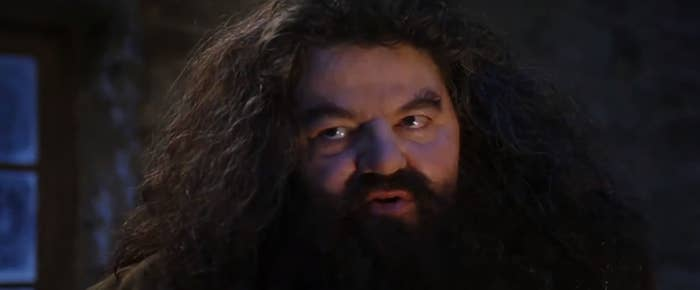 Hagrid from the first movie telling Harry something he's never heard before