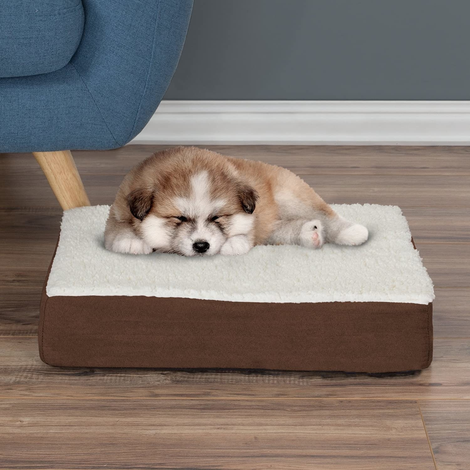 A cute dog sleeping on top of the pet bed