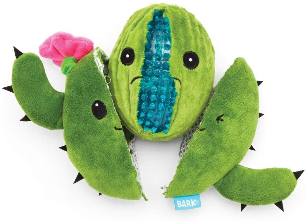 A cactus plush toy ripped in half to reveal a blue chewy ball