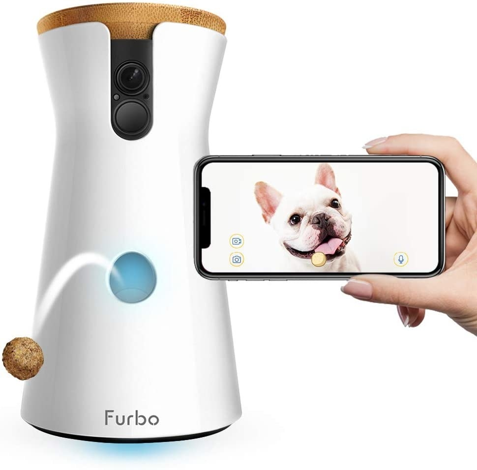 A Furbo dispensing a treat while a hand holds up an iPhone with a dog video on it