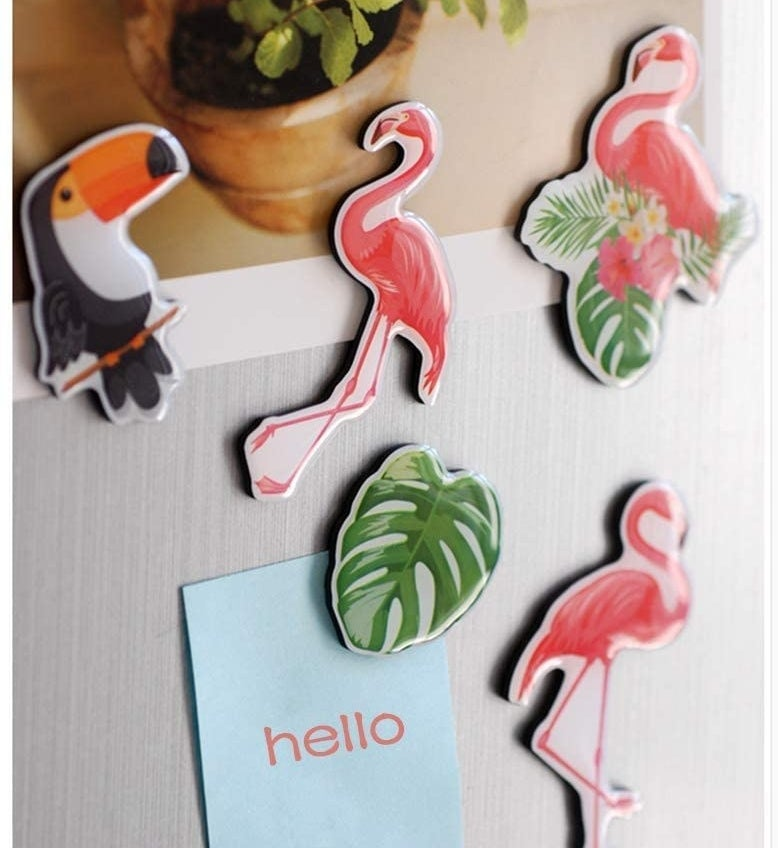 Flaming, palm leaf, and toucan magnets on a fridge