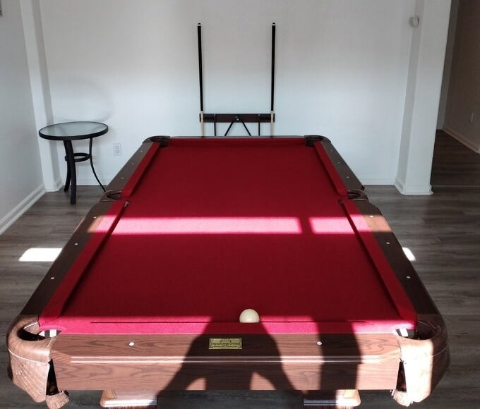 Reviewer's picture of the pool table with red velvet lining and dark wood framing