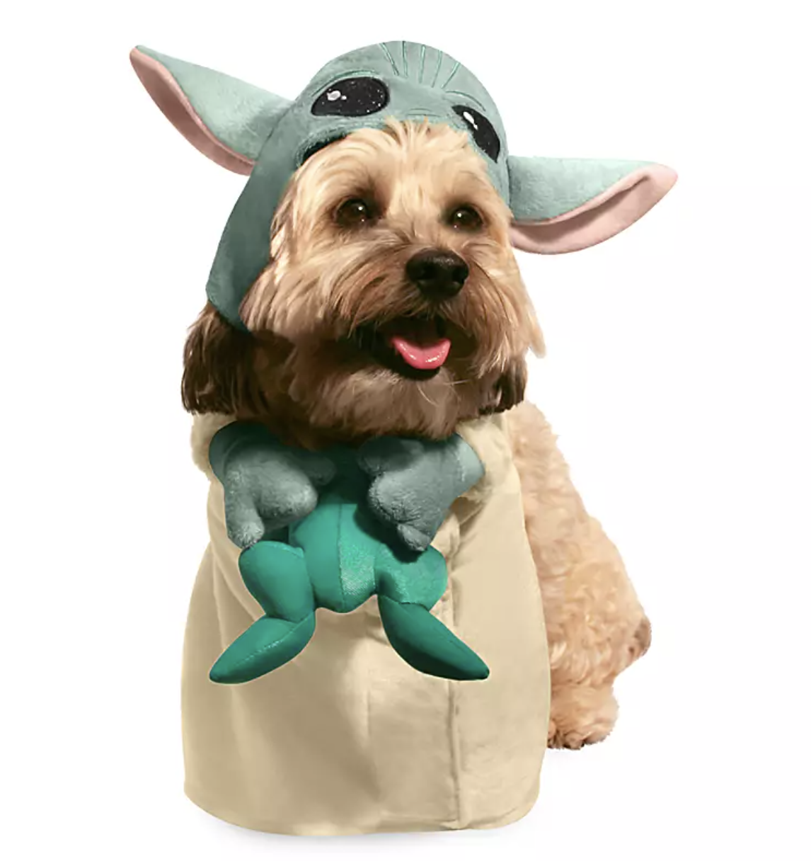 a small dog wearing a baby yoda costume complete with a hood and making the dog look like they have tiny hands holding a frog
