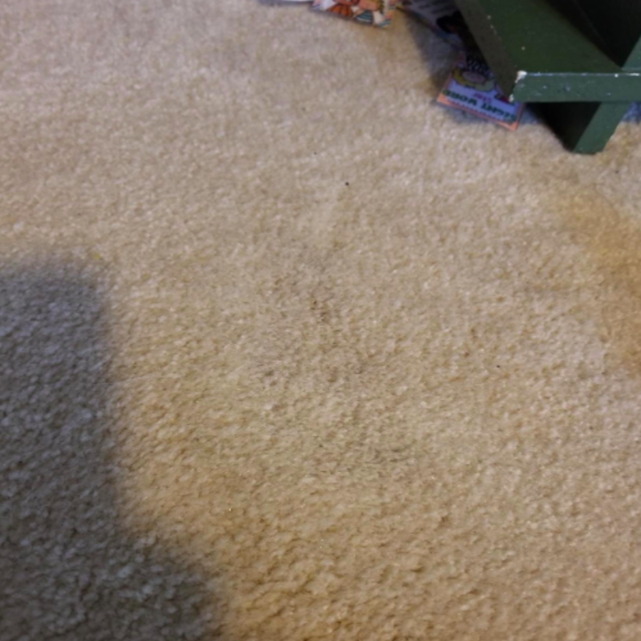 The same reviewer's carpet now completely clear of the stain