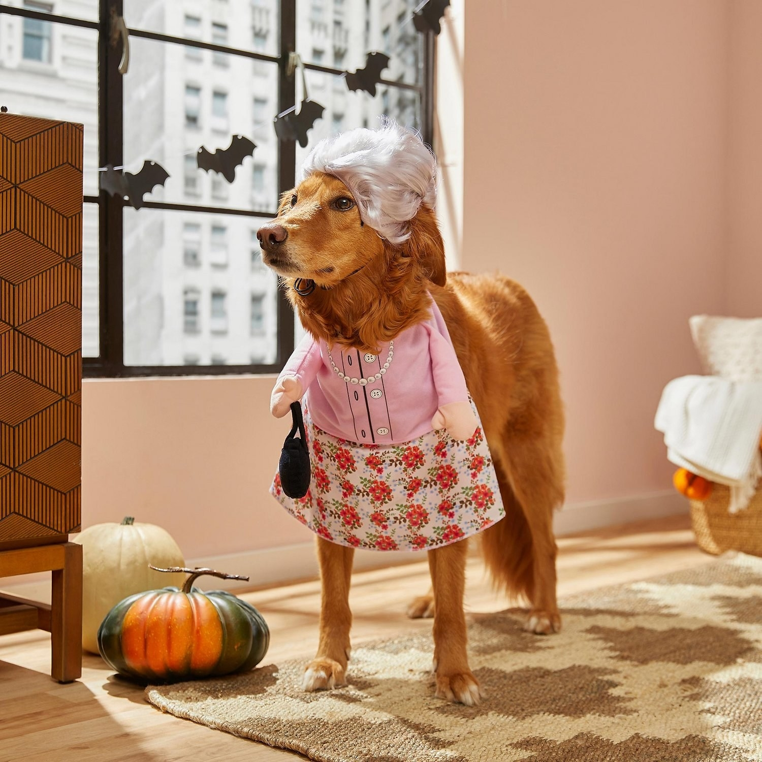 a golden retriever wearing a dress with little arms holding a purse and a grey wig