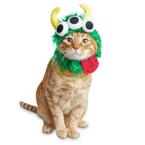 a cat wearing a green furry hood with three eyes and yellow horns