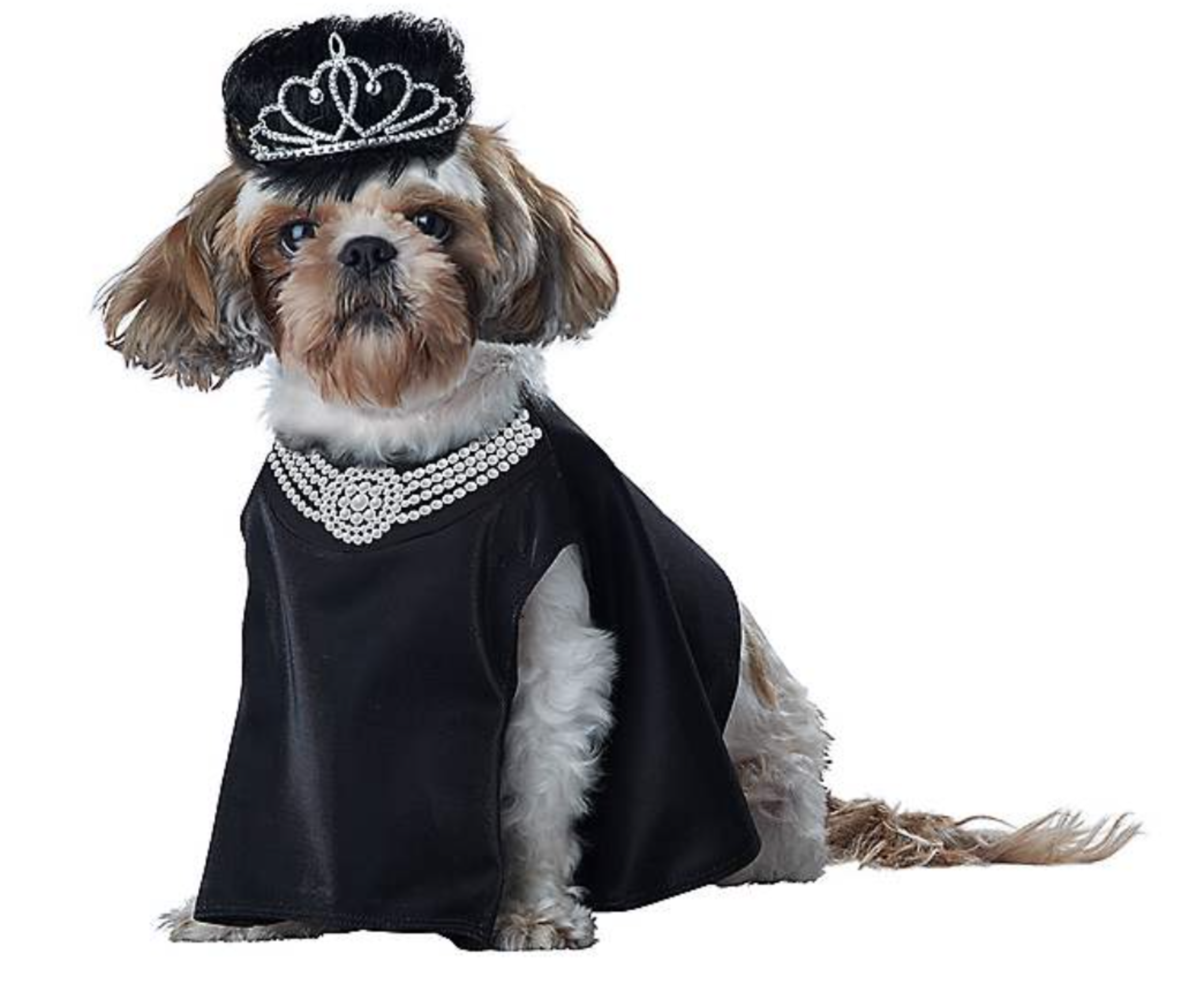 a dog wearing a black gown with fake pearls and a brown wig with a tiara