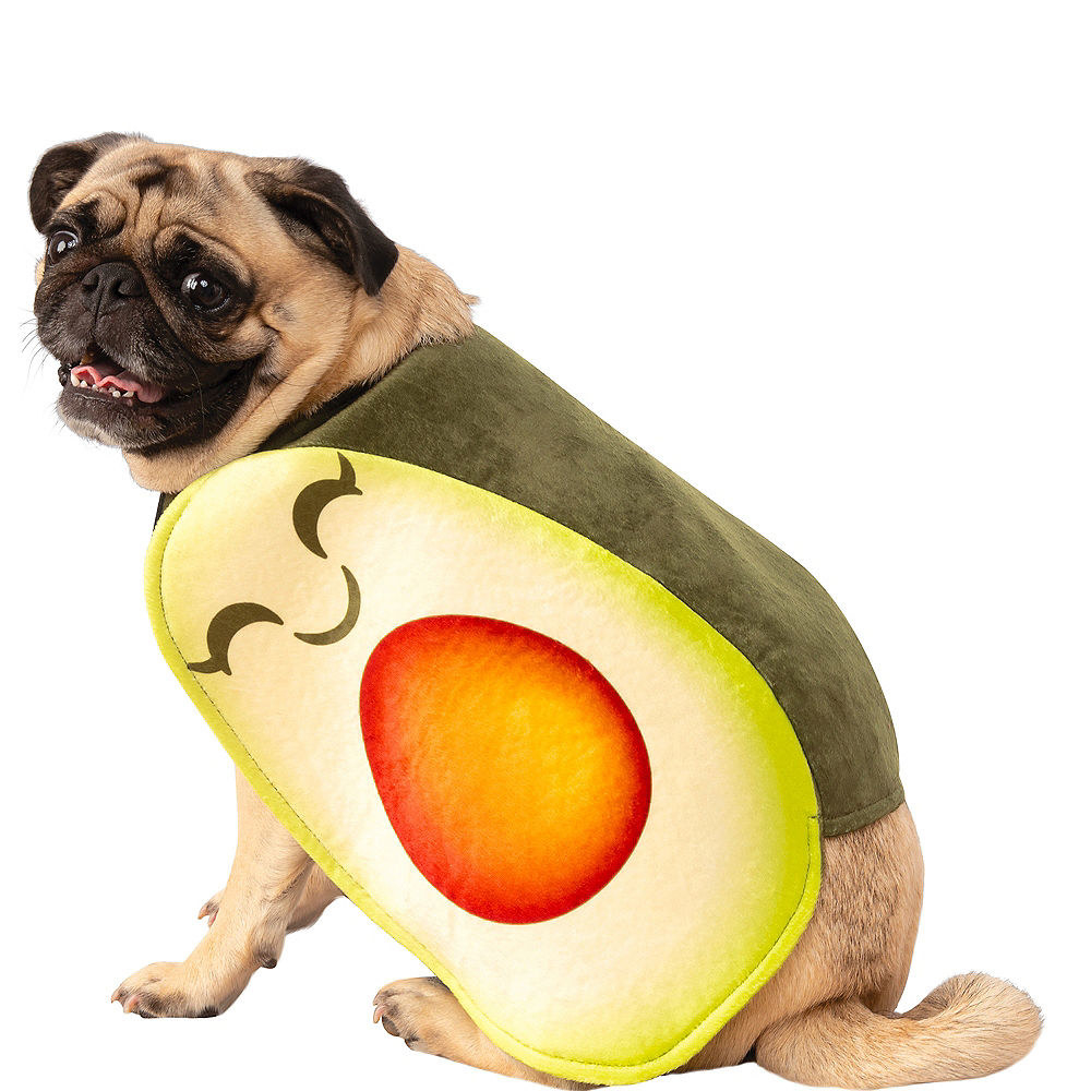 a pug wearing an outfit that looks like an avocado