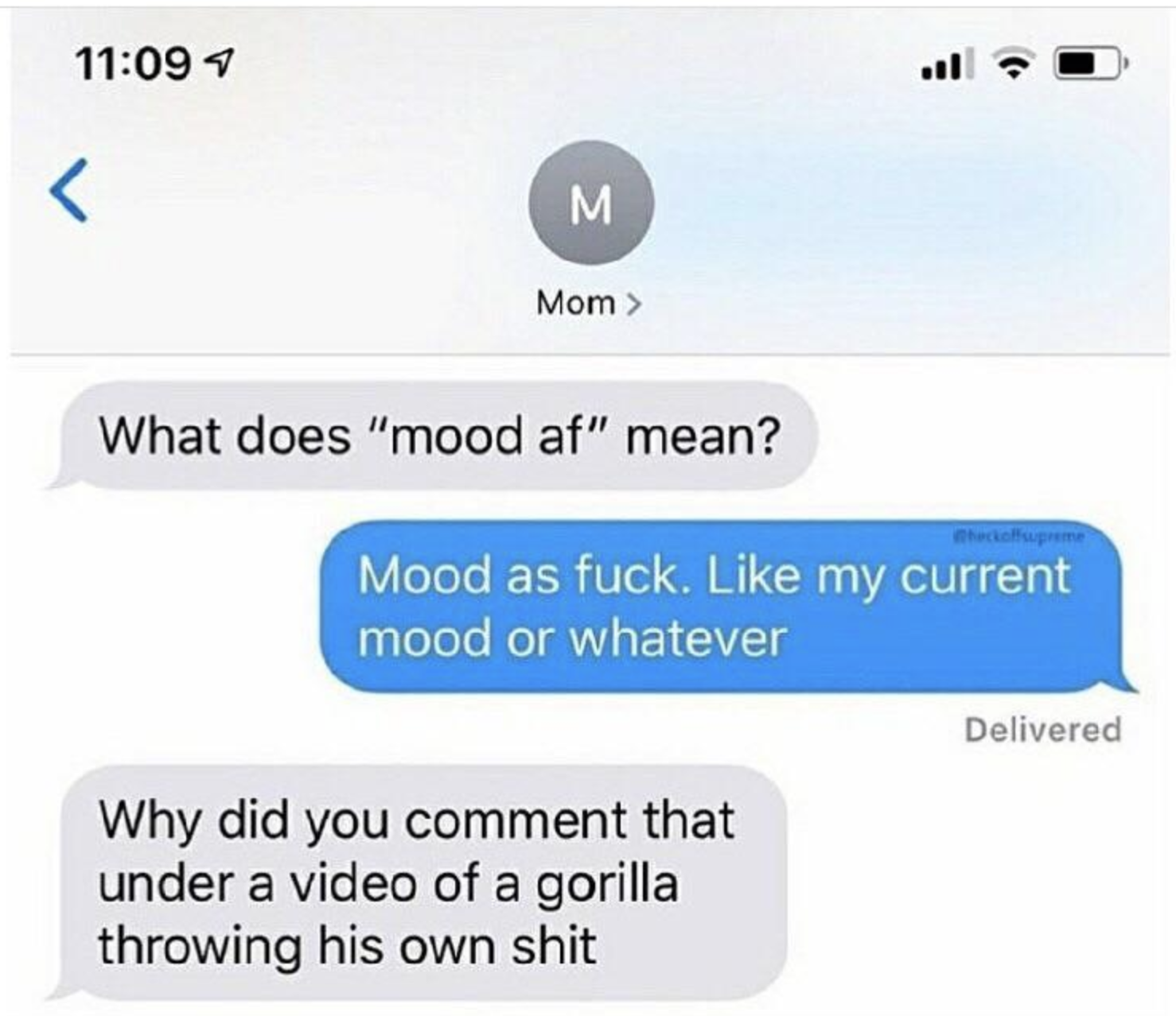 """A text from someone's mom saying, """"What does 'mood af"""" mean?,"""" a response that goes, """"Mood as fuck. Like my current mood or whatever"""" then the mom texting, """"Why did you comment that under a video of a gorilla throwing his own shit"""""""