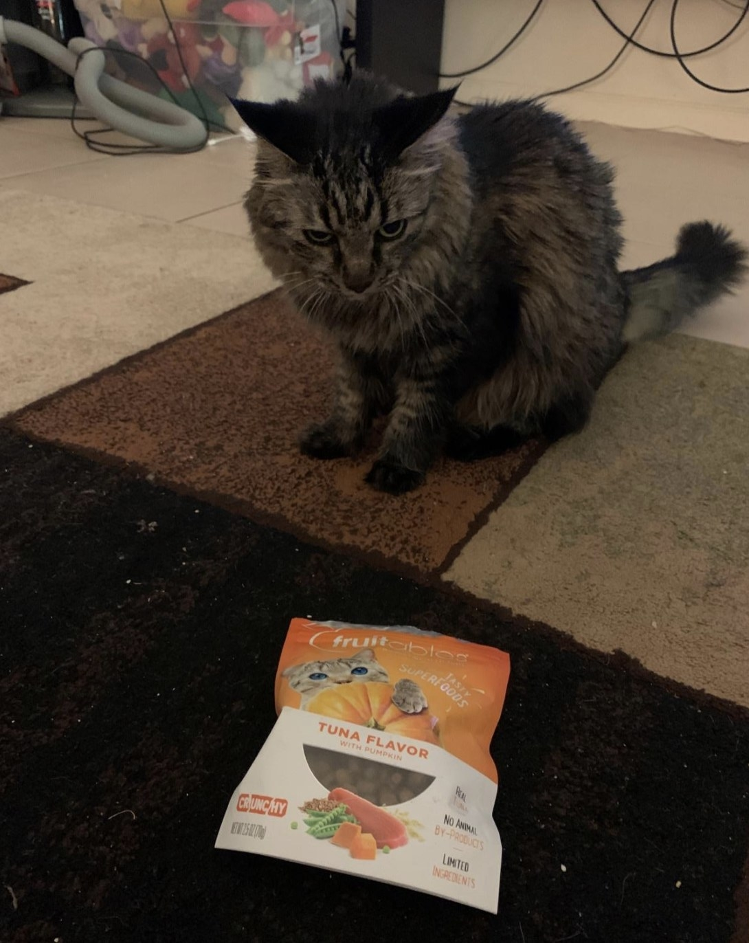 A black and grey long-haired cat is sitting next to pack of fruitables crunchy cat treats
