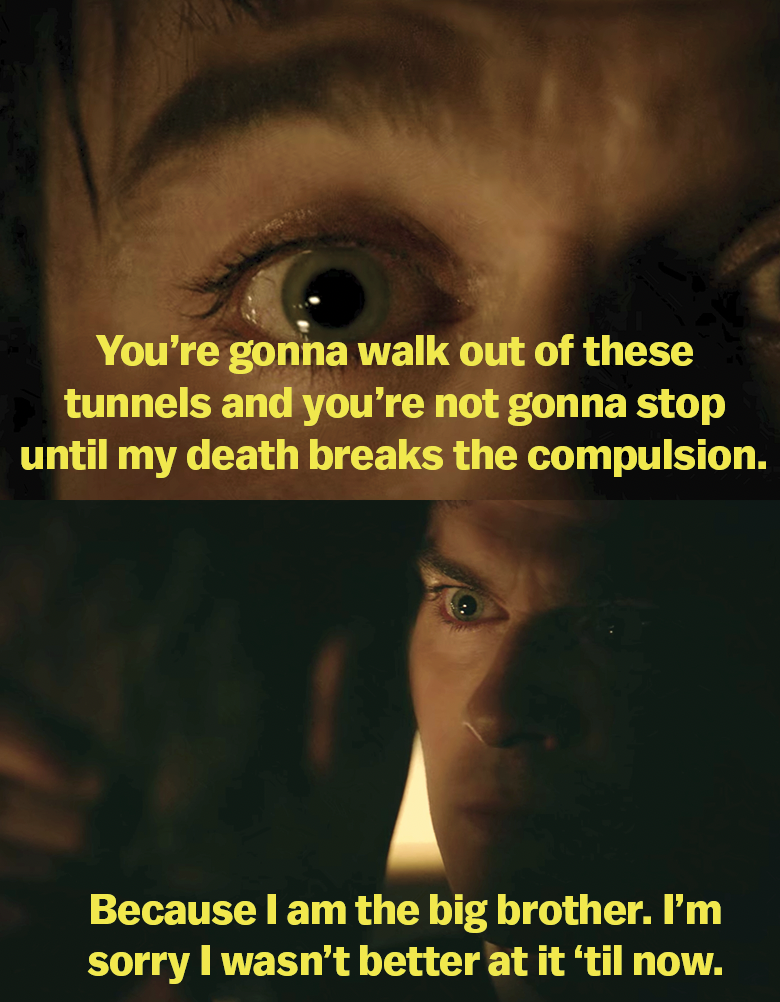 Damon compels Stefan to leave and let him die, because he's the big brother and hould protect Stefan. He apologizes for not doing so before