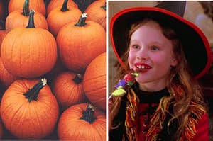 "A pile of pumpkins is on the left with Dani from ""Hocus Pocus"" eating candy on the right"