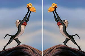Rafiki holding simba up on pride rock, and a mirrored version of the image next to it