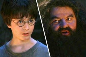 Harry looking at Hagrid in disbelief