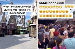"""On the left it shows an empty park and says """"What I thought Universal Studios was looking like during COVID"""", and on the right it says """"SIKE"""" and shows a crowded park"""