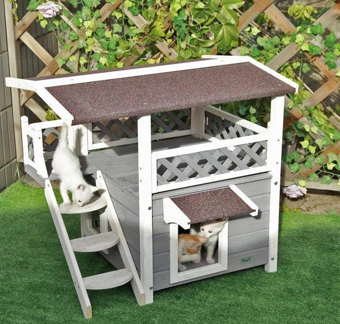 cat house