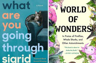 What Are You Going Through book cover / World of Wonders book cover