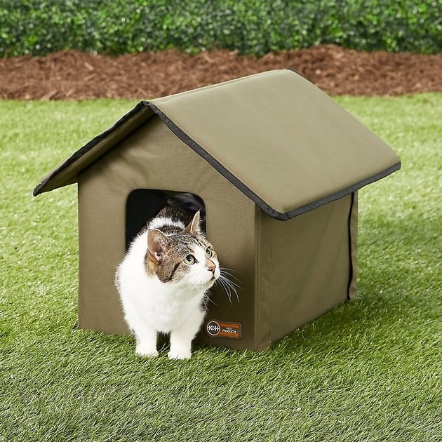 A cat walks out of the olive K&H Pet Products Outdoor Heated Kitty House
