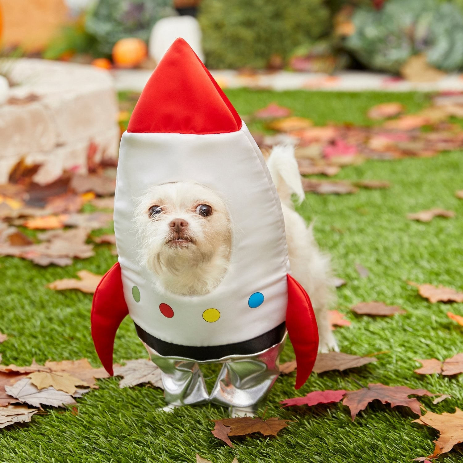 a dog wearing a costume that looks like a rocket ship