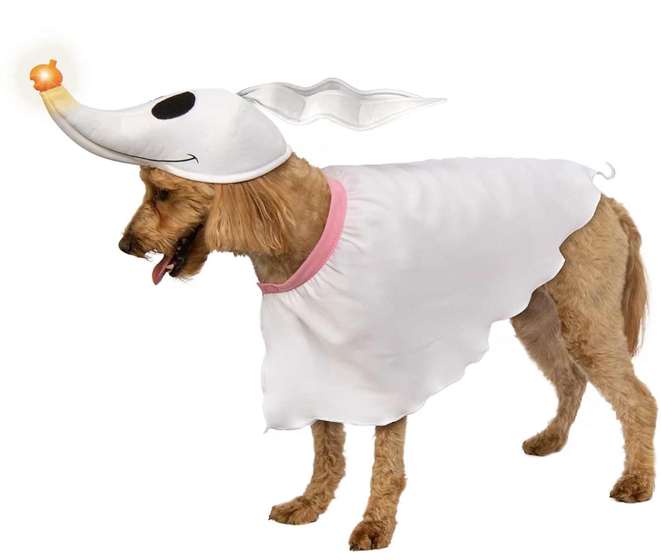 a dog wearing a hat that looks like zero's head from the nightmare before christmas and a ghostlike shirt
