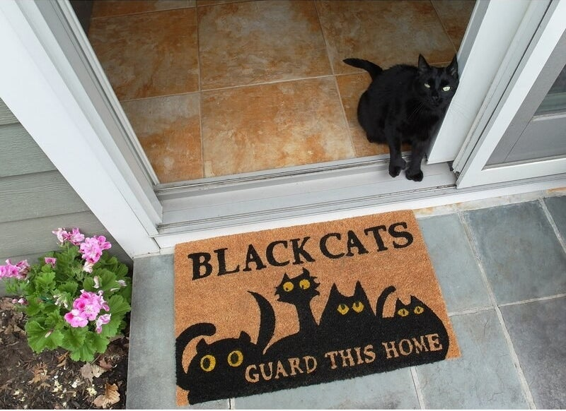 The black cats doormat in front of a door