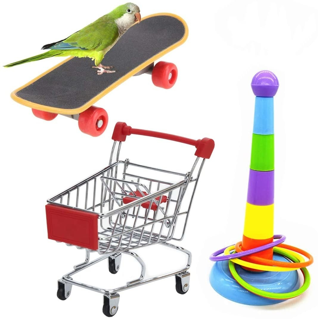 A bird riding the tiny skateboard, the little shopping cart, and the rainbow ring toss game with four rings