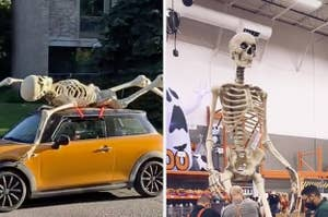 Someone bringing the giant skeleton home on top of their tiny car, and the skeleton towering over employees trying to dissemble it in home depot