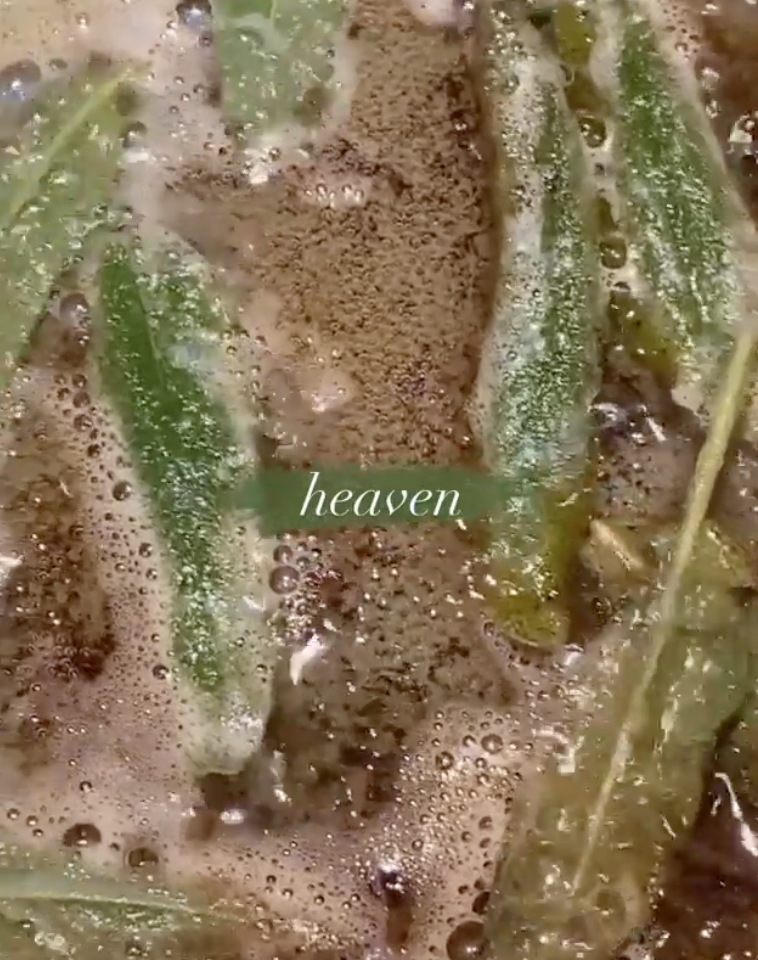 """The sage sizzles as it cooks with the caption """"heaven"""""""