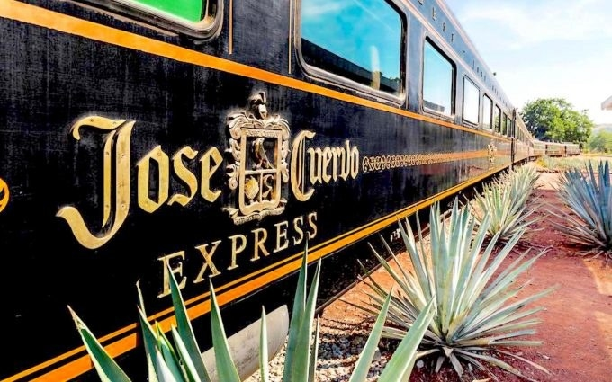"A luxury ""jose cuervo"" train on a track lined with spiky agave plants"