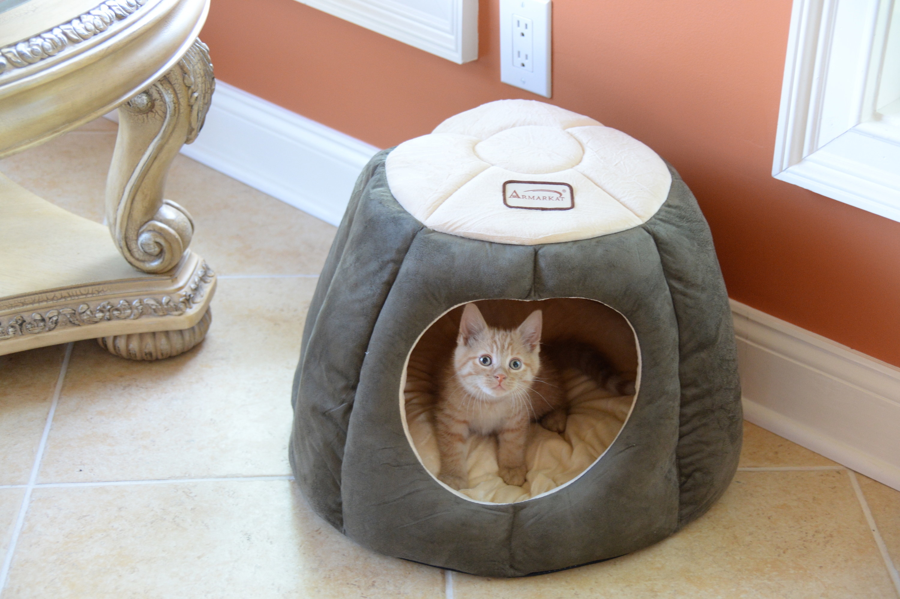 Cave cat bed in Laurel Green and Beige