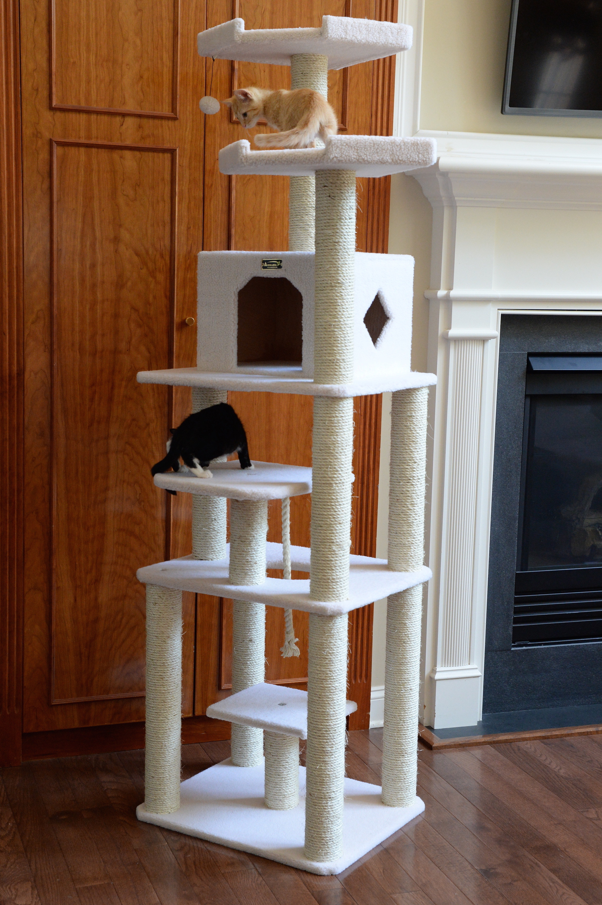 Two cats resting on the scratching condo