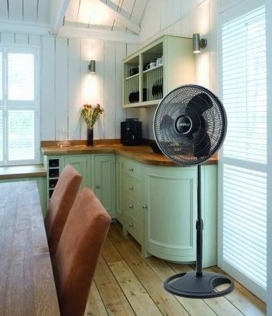 The tall fan