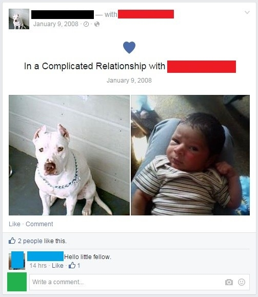 "A post announcing a ""complicated relationship"" between two people but their profile pictures are a dog and a baby"