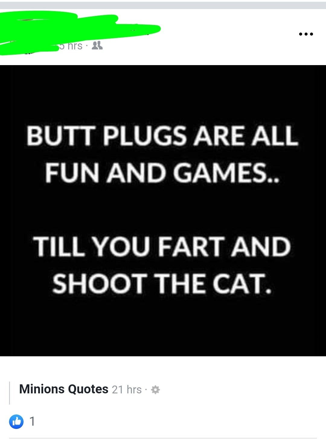"A joke from a page called ""Minions Quotes"" that says ""butt plugs are all fun and games until you fart and shoot the cat"""
