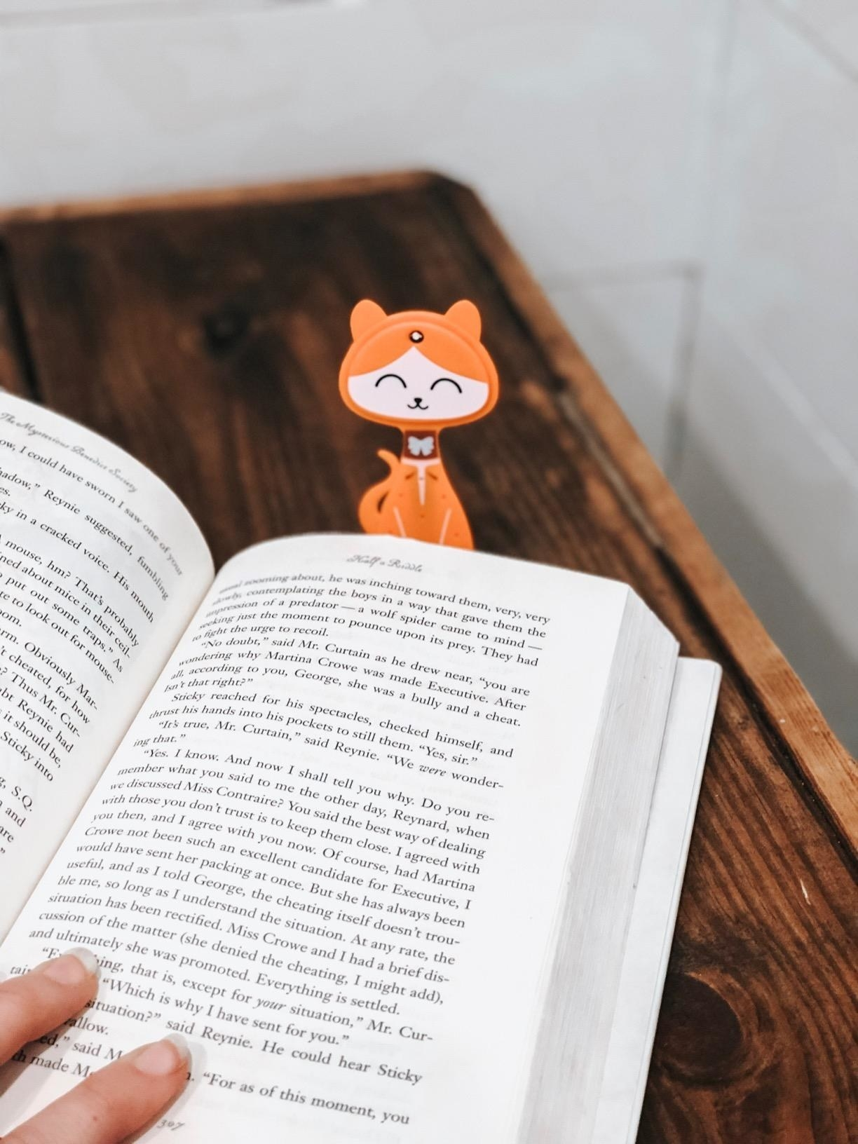 flat cat bookmark with light on forehead slipped into a book