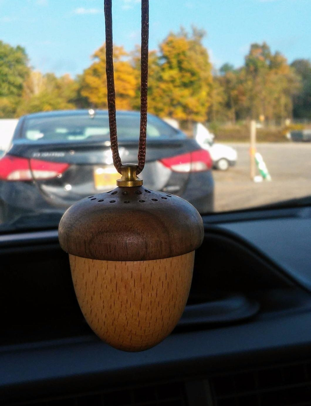 small acorn hanging from rearview mirror