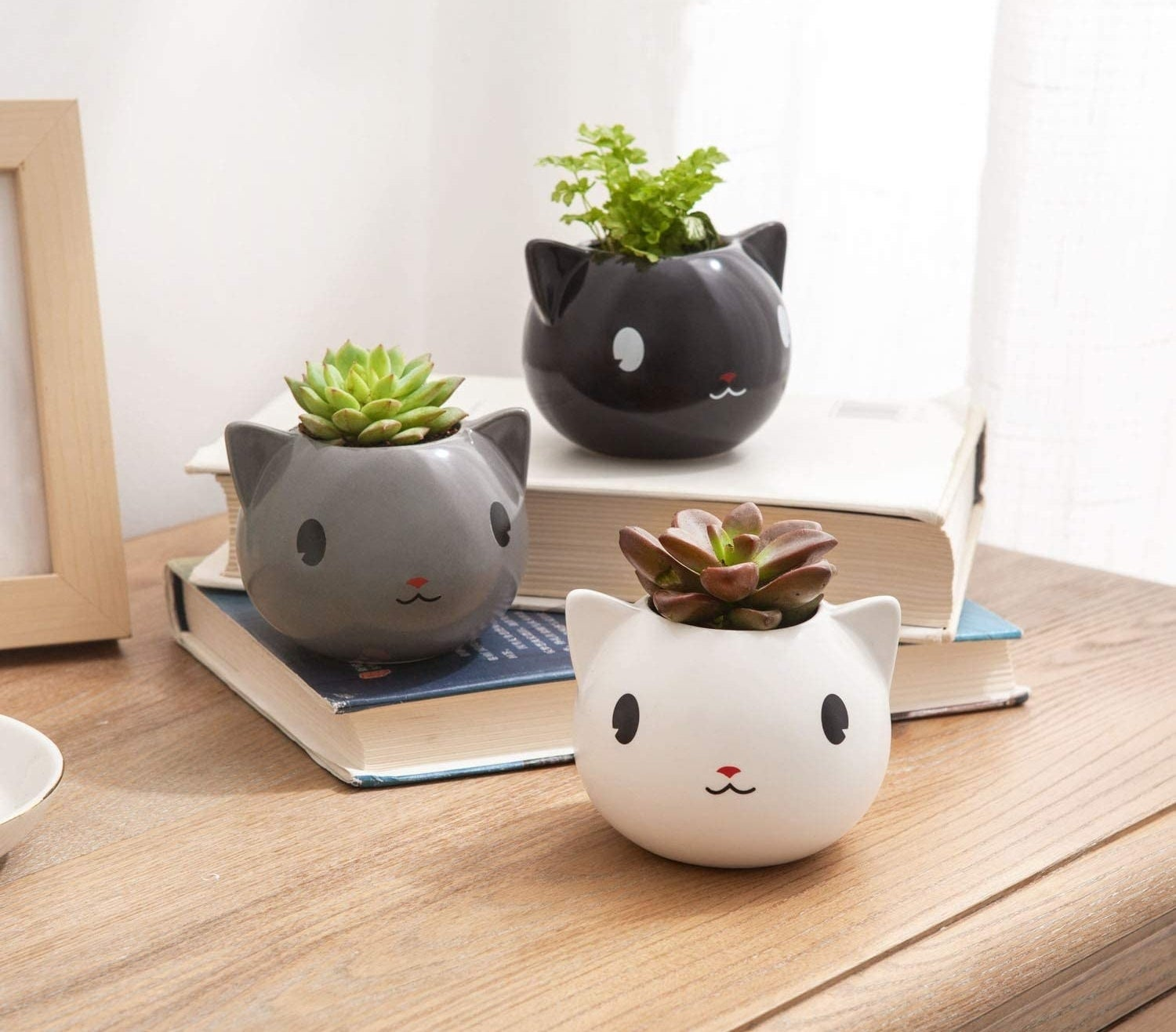 The round, slightly larger than palm size planters in black, gray, and white each holding a small plant. They've got protruding ears and faces drawn on them