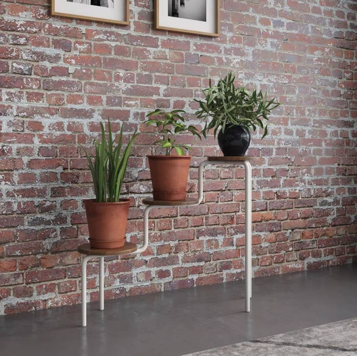 The white and raw wood plant stand