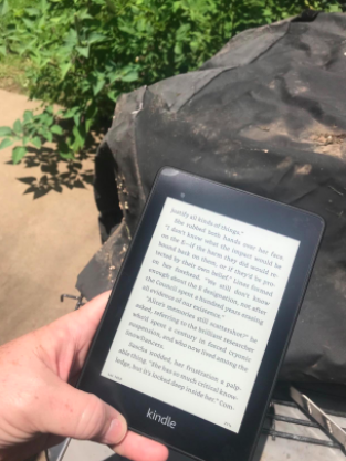 person holding the kindle