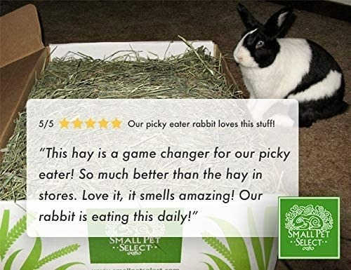 The box of hay next to a rabbit
