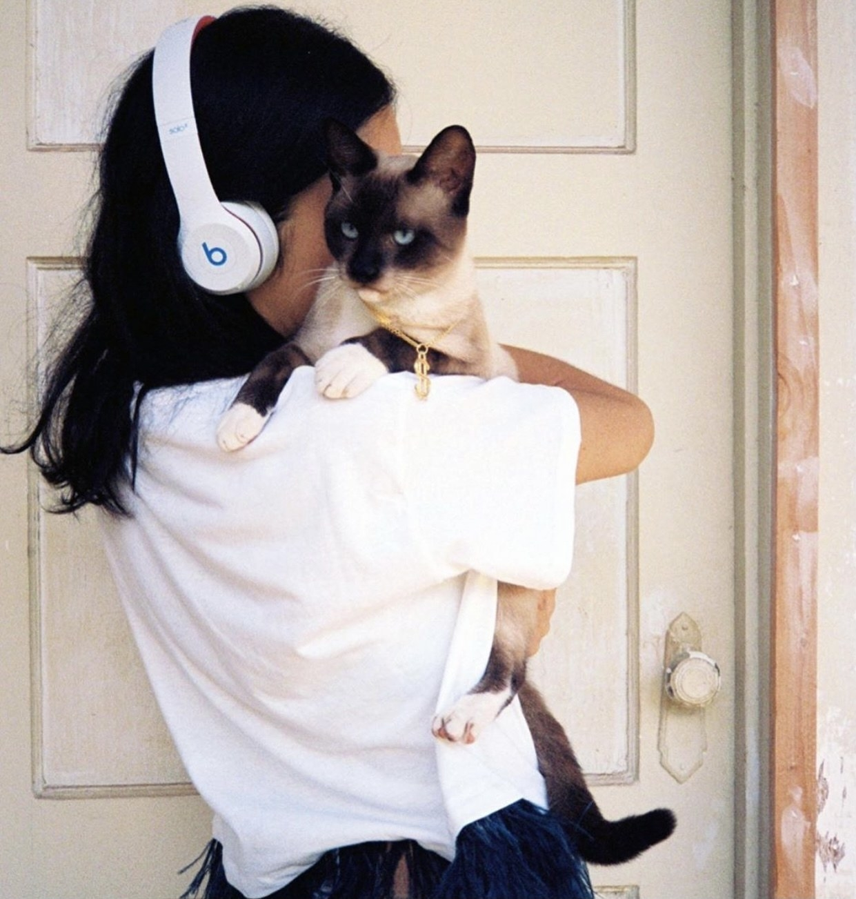 Person is holding a cat with white Beats headphones on