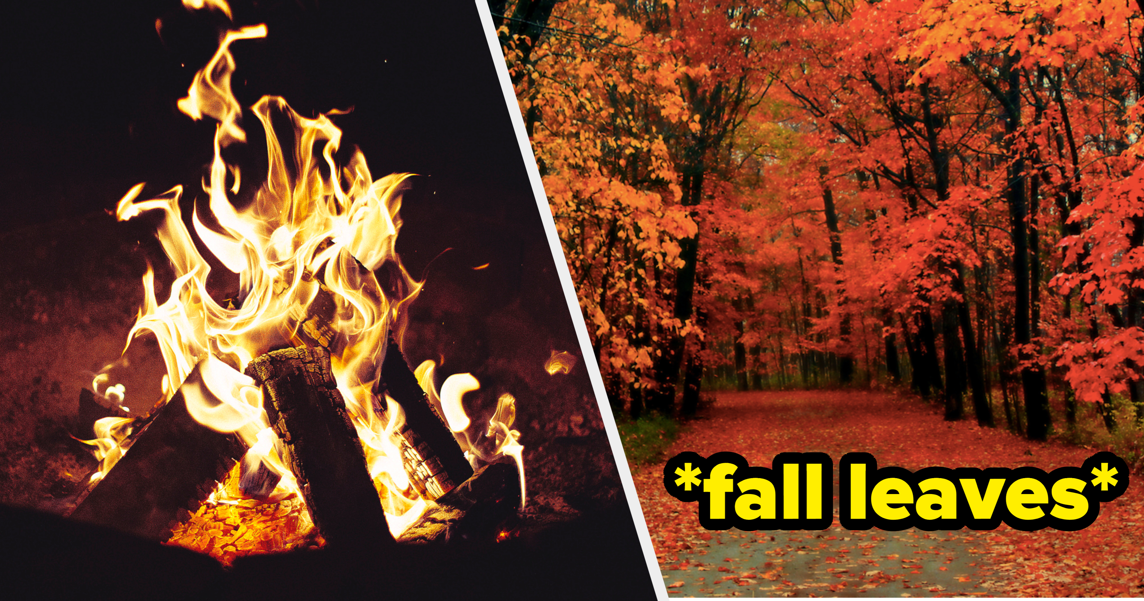 Can We Guess Your Favorite Fall Scent